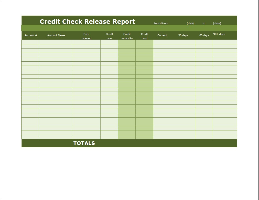 Credit Check Release Report